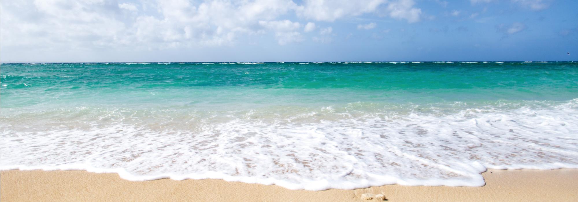 沖縄に進学を考えている皆様へ